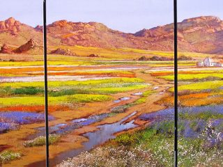 Spring time in Namaqualand - W135cm H61cm R28,000