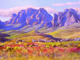 Fynbos under Jonkershoek Mountains - W76cm X H51cm R13,500