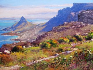 Apostles Path, Table Mountain - W61cm X H45cm R6,500