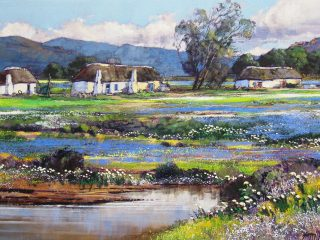 Wild flowers near Darling - W76cm X H51cm R13,500