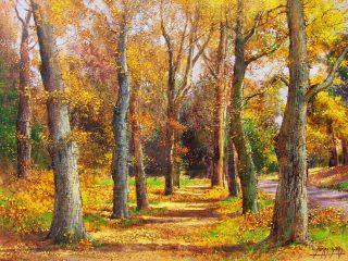 Oak Trees near Stellenbosch - W61cm X H45cm R6,500