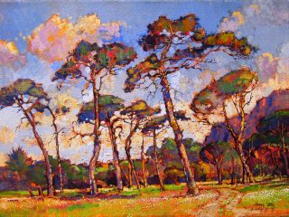 Dancing Pines, Newlands - W61cm X H45cm R8,000